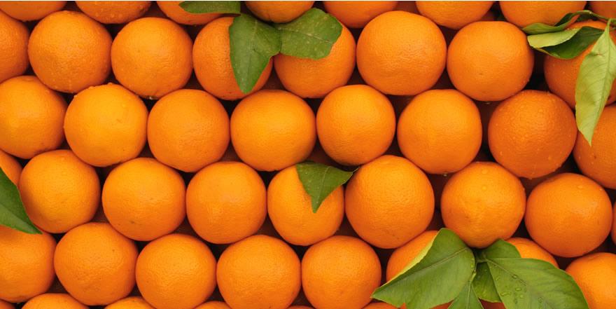 que variedad naranja comprar