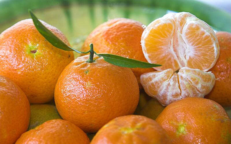 Mandarinas variedades
