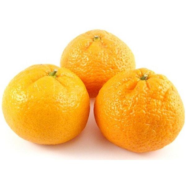 Mandarina Iwasaki