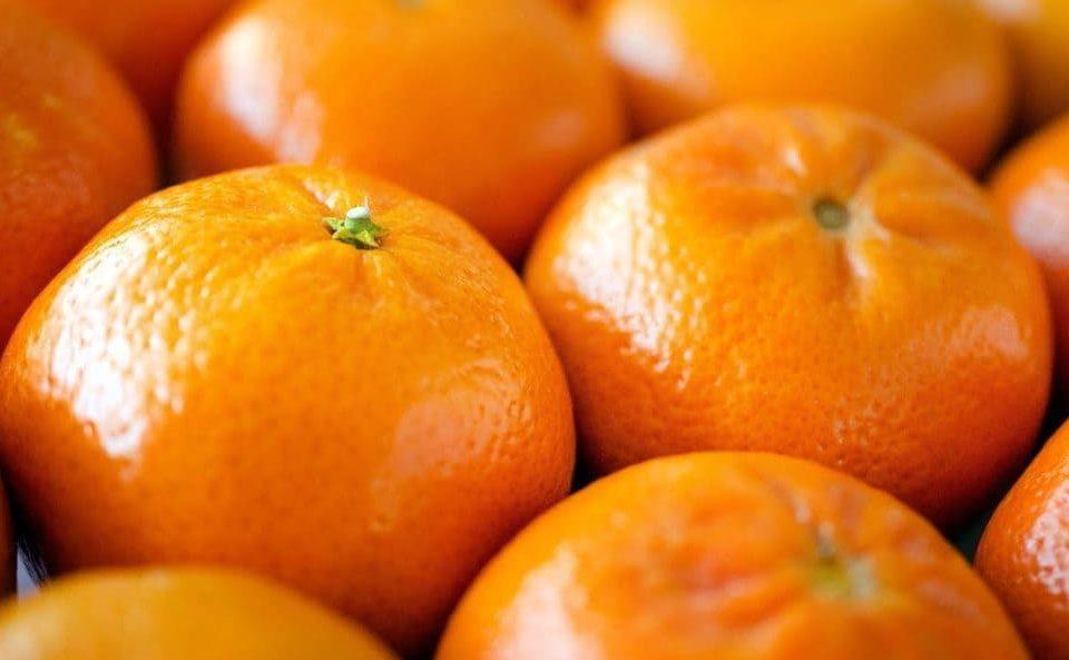 Diferencias naranjas y mandarinas